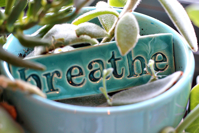 essential oils and stress