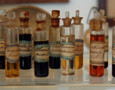 The Secret to a Successful Essential Oil Business